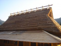 Traditional Japanese roof